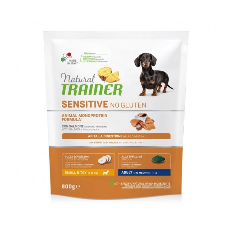 NATURAL TRAINER  Sensitive No Gluten Adult Mini Salmone 800g